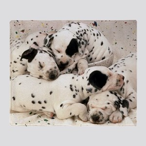 Dalmation sm fr pan print Throw Blanket